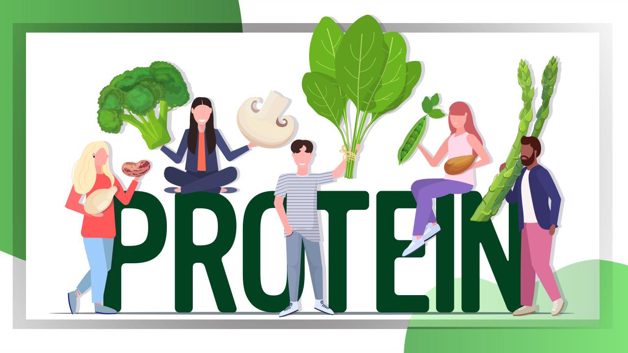 Proteins for vegetarians and vegans