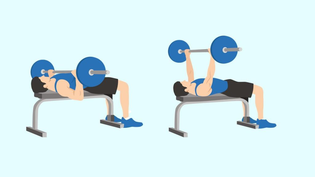 Gym upper body exercise: Chest press/ bench press machine