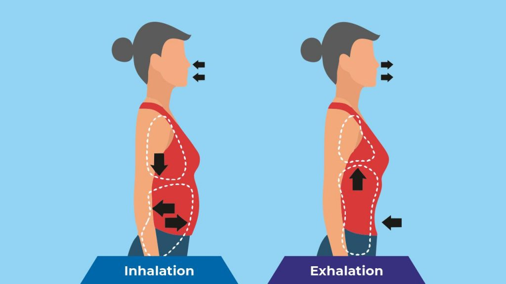 Belly or diaphragmatic breathing