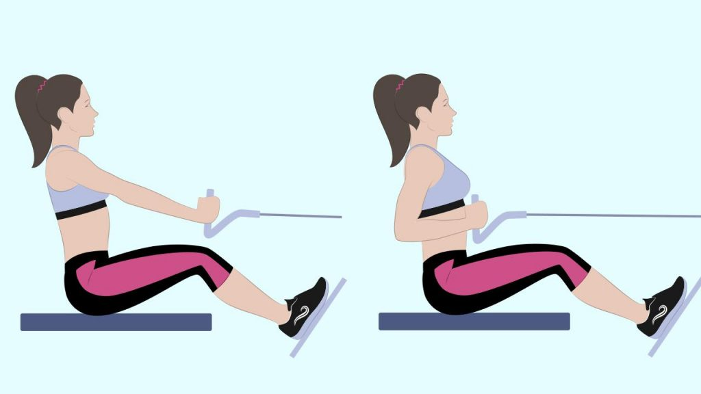 Gym upper body exercise: Seated cable row