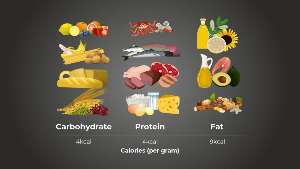 The number of calories supplied by macronutrients
