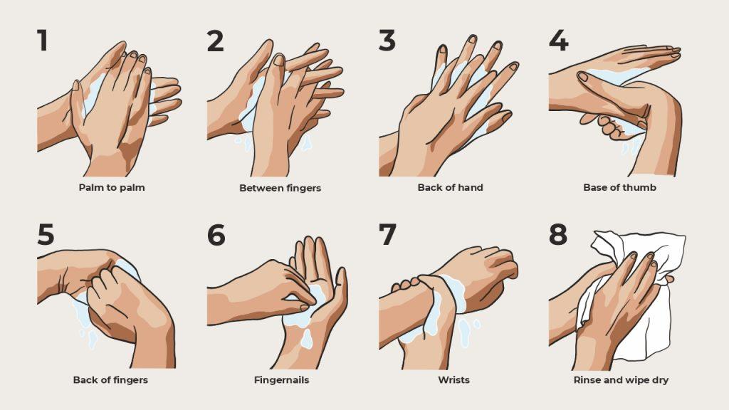steps of handwashing