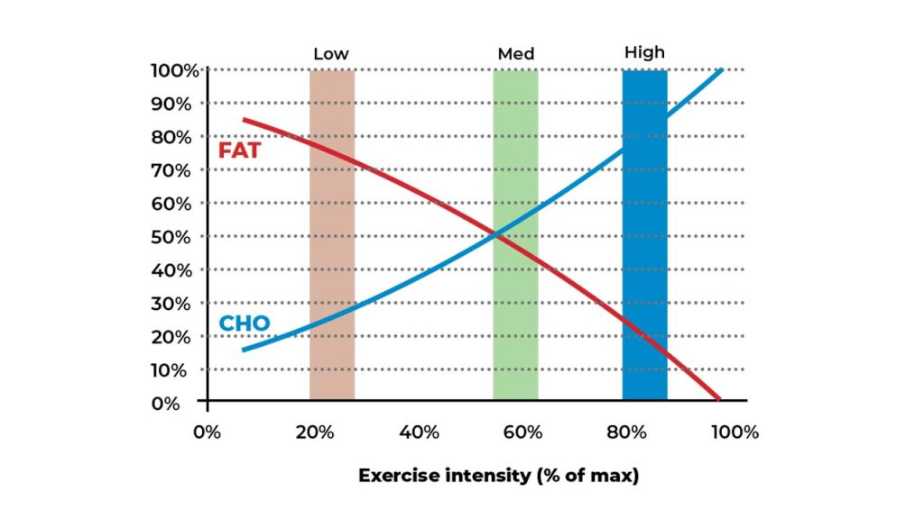Use of fat and carbohydrates based on exercise intensity