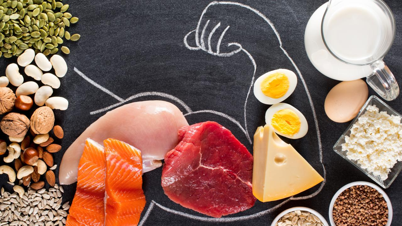 Protein for building muscles