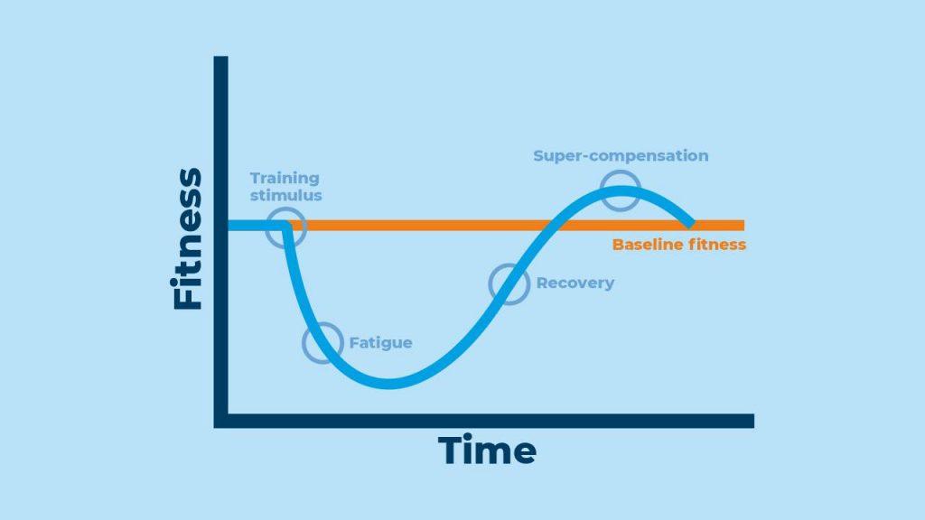 stimulus-fatigue-recovery-adaptation model
