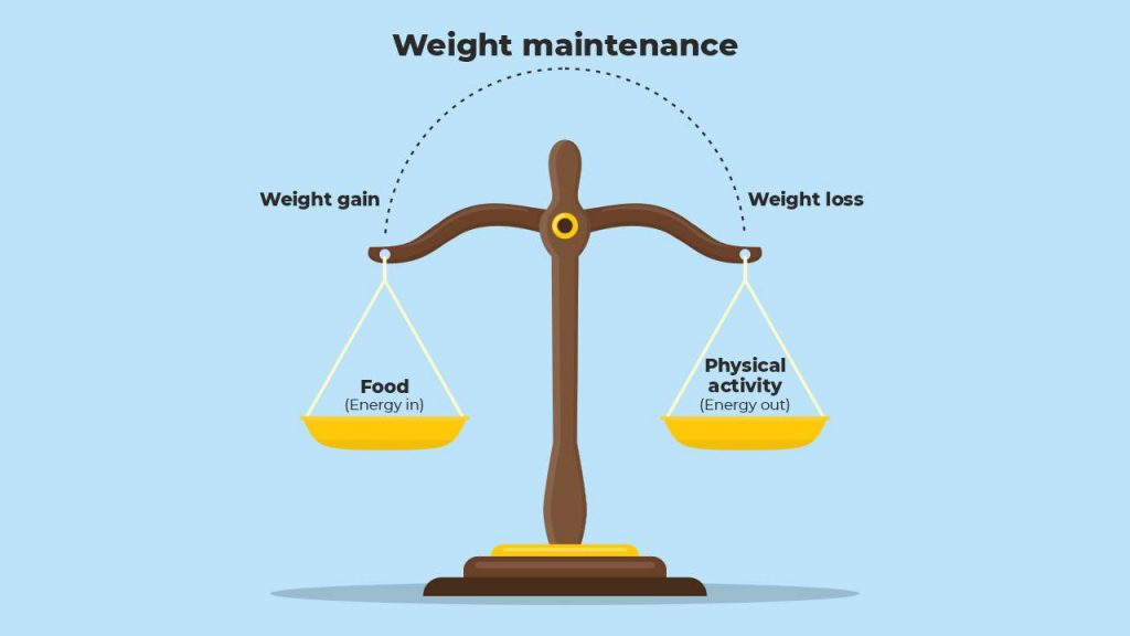weight maintenance scale
