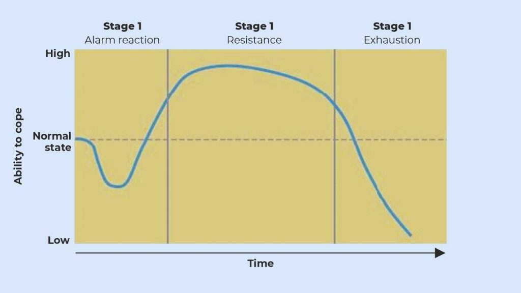 General Adaptation Syndrome stages