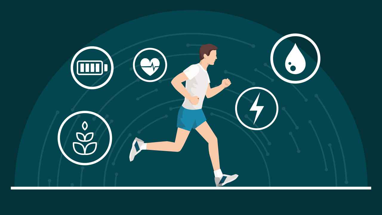 fat vs carb as an energy source for running