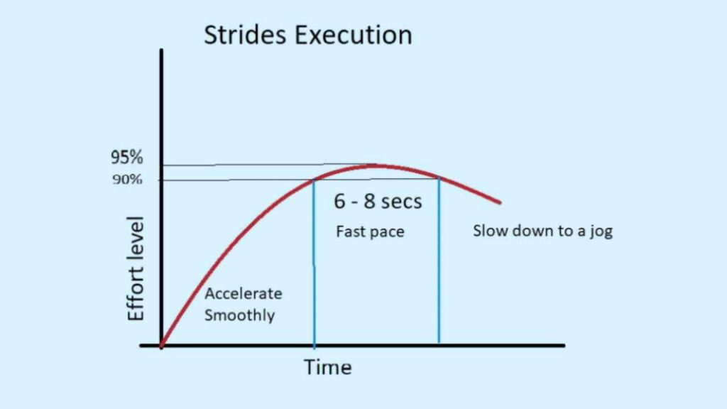 how to perform strides