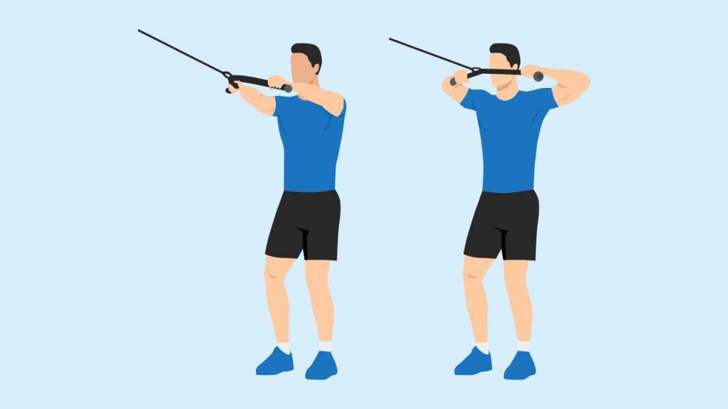 Face pulls exercise